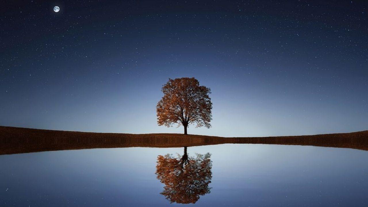 Ongekend Eenzaamheid, wat zegt het over jouw verlangens? - Tesoro KD-77