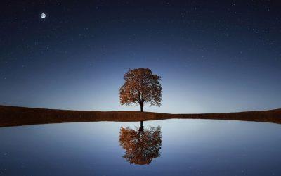 Eenzaamheid, wat zegt het over jouw verlangens?